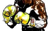 bokser_4